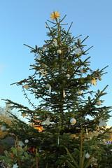 Christmas Tree (Eugene Regis) Tags: london hydepark hydeparklondon royalparks winterwonderland hydeparkwinterwonderland christmas christmaslights amusementpark fairground