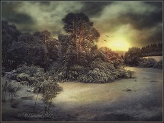 Winter evening. (odinvadim) Tags: mytravelgram paintfx textured textures iphone editmaster travel iphoneography sunset evening iphoneonly painterly artist snapseed landscape photofx specialist iphoneart graphic painterlymobileart