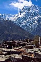 TREKKING ANNAPURNA.. (lupus alberto) Tags: nepal annapurna tetti cima himalaya ghiacciaio