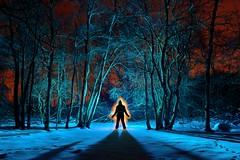 Frozen (palateth) Tags: lightpainting lightart night belgique belgie belgium nophotoshop singleexposure sooc woods outdoor blue orange snow fagnes malchamps silhouette