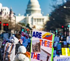 2017.02.04 No Muslim Ban 2, Washington, DC USA 00515