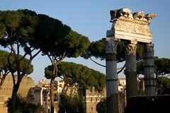 Rome 2010 1016