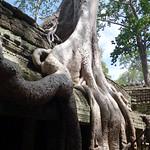 Ta Prohm-Tempel