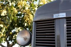 IMG_0388 (ACATCT) Tags: old españa tractor spain traktor agosto toledo antiguo massey pistacho tembleque barreiros 2015 bustards perdices liebres avutardas ff30ds r350s