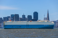 ruby ace (pbo31) Tags: sanfrancisco california city blue summer urban color skyline port bay nikon ship treasureisland august bayarea transamerica shipping d800 2015 boury pbo31 rubyace