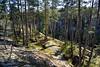 Rocky pine forest (Nettaa, Espoo, 20120501) (RainoL) Tags: forest espoo finland geotagged evening spring may u fin 2012 uusimaa 201205 röylä 20120501 sg2013 geo:lat=6029794800 geo:lon=2466971600