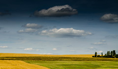 De terre... (Fabrice Le Coq) Tags: jaune vert bleu ciel nuage paysage campagne extérieur champ abstrait fabricelecoq