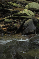 creek (Molly Des Jardin) Tags: park trees usa water rock stone creek forest flow waterfall rocks state pennsylvania stones rocky running lancaster 2014 susquehannock drumore 43215mm