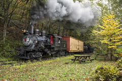 2015-10-03 1153 Caboose Spur, Second Runby, Moore- Keppel No. 3, Durbin, WV (jimkleeman) Tags: dgv climax climax3
