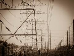 PB222152.jpg (mcreedonmcvean) Tags: powerlines centraltexasfarmingland 20151123