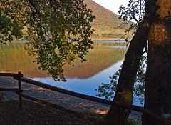 Lago di Vico (giorgiorodano46) Tags: autumn italy fall lago autunno lazio lagodivico lagovulcanico monticimini novembre2015