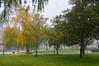 A veces la niebla deja (Jesus_l) Tags: europa españa valladolid lasmoreras jardín paseo jesúsl