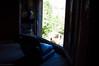 outside (Morwenn Haëlia D.) Tags: extérieur siège urbex rennes serres luminosité couleur abandon ouverture monde nature soleil horizon