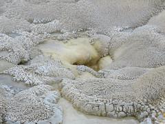 Anemone Geyer (Upper Geyser Basin #22) (jimsawthat) Tags: geyser thermalfeature uppergeyserbasin rural wyoming yellowstonenationalpark