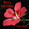 Merry Christmas (Vicki's Nature) Tags: merrychristmas swamphibiscus red flower blossom text yard georgia vickisnature canon s5 0081