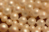 Pretty pearls all in a row. (tam_and_john) Tags: macro mondays redux starts with letter p