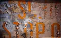 (jtr27) Tags: jtr27 dsc08784e sony alpha nex7 nex emount mirrorless sigma 60mm f28 dn dna dnart sigmaart school bus junkyard maine newengland typography typographic decay peelingpaint yellow