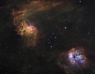 Flaming Star & Tadpole Nebulae