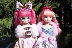 Lorraine & Sissy (Sin.da.a.ta.ri.en) Tags: takara tomy licca chan fashion doll pink hair merry go round sweets paradise