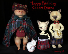 Trigger warning!  Random plaid (bentwhisker) Tags: dolls bjd resin anthro cat kitty feline siamese robertburns mouse nympheasdolls brioche dollfamilya kai dollzone burton tomcat 5167