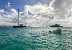 Caribbean (- Adam Reeder -) Tags: adam reeder adamreeder coconutbarometer kk6gpv awesome cool photo photography personal travel wwwkk6gpvnet areed145 fountain catamaran y2017 m01 d11 lat180 lon650 mary point central saint john island us virgin islands jpg apple iphone 7 caribbean snorkel reel trimaran paddle lakeside wreck swing schooner boat