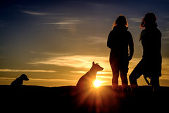Sahara sunrise (Klas-Herman Lundgren) Tags: morocco northafrica sahara desert öken soluppgång sol morgon sunrise travel mhamid