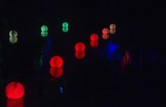 Palmy North Lake lights (feefoxfotos) Tags: sharethemagicfol2017 tsbfestivaloflights lake reflection