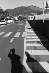 Liguria (fabiolug) Tags: street light shadow shadows self selfportrait lines spotorno liguria ligury italia italy leicammonochrom mmonochrom monochrom leicamonochrom leica leicam rangefinder blackandwhite blackwhite bw monochrome biancoenero 35mmsummicronasph 35mmf2summicronasph summicronm35mmf2asph summicron35mmf2asph 35mm summicron leicasummicron leica35mm road palms palm