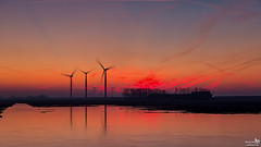 Winter Sunrise (BraCom (Bram)) Tags: bracom sunrise zonsopkomst reflections winter spiegeling ice ijs cloud wolk glow gloed farm boerderij windmill windmolen windturbine naturearea natuurgebied cold koud trees bomen morning ochtend herkingen paardengat goereeoverflakkee zuidholland nederland southholland netherlands holland canoneos5dmkiii widescreen canon 169 canonef24105mm bramvanbroekhoven nl