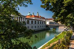 IMG_9756 (ludo.depotter) Tags: ljubljana ljubljanica slagersbrug slovenië