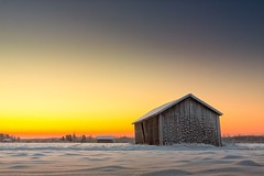 Sunrise On A Cold Morning (k009034) Tags: 500px winter copy space finland matkaniva oulainen tranquil scene agriculture architecture barns cold countryside fields frost nature no people rural seasons sky snow sunrise teamcanon
