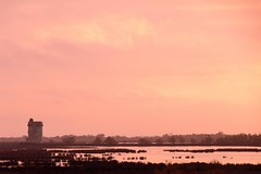 Pink Morning on the Tower (NathalieSt) Tags: camargue europe france gard languedocroussillon tourcarbonniere leverdesoleil marais nikon nikond5500 nikonpassion nikonphotography sunrise saintlaurentdaigouze languedocroussillonmidipyrén languedocroussillonmidipyrénées fr