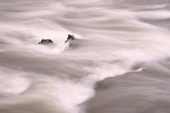 Résiste ! (Marc ALMECIJA) Tags: eau water wasser aqua sony rx10 agout tarn brassac long exposure longue pose filet river rivière filé