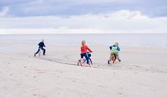 DSC_5375 (cirsis) Tags: wood sea beach nature childhood bike kids children fun design unique latvia startup balance plywood brumbrum adesignawardwinner