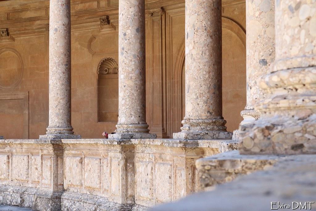 Palacio De Carlos V De La Alhambra (Elvira DMT) Tags: De Carlos Patio