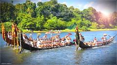 IMG_4060 (|| Nellickal Palliyodam ||) Tags: india race boat snake kerala krishna aranmula avittam parthasarathy vallamkali palliyodam malakkara nellickal jalothsavam