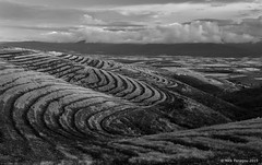 B&W Curves (Nick Panagou) Tags: light sunset black mountains field lines clouds contrast landscape blackwhite outdoor curves dramatic greece greatphotographers flickrsbest superphotographer silhouettesshadows bestshotoftheday magnesia canon400d flickrbest bestphotographer shadowssilhouettes spiritofphotography canonefs1855mmf3556isii cloudsstormssunsetssunrises