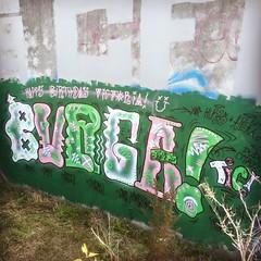 Train Side, Hamilton, NZ (ViSiON (NZ)) Tags: streetart graffiti vision tic graffitiart talkischeap burga nzstreetart dunedingraffiti dunedinstreetart nzgraffiti nzgraffitiart dunedingraffitiart streetartdunedin