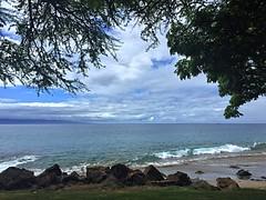 1 Under a Tree (Mertonian) Tags: ocean blue trees white green beauty grass clouds wonder hawaii waves maui iphone ifone mertonian ineffible robertcowlishaw