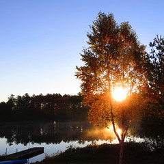 Autumn sunrise (yooperann) Tags: new autumn lake tree fall sunrise dock bass michigan upper birch peninsula township forsyth gwinn swanzy
