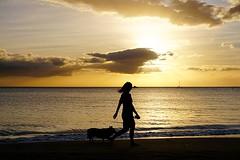 Evening walk (#KPbIM) Tags: trip november beach hawaii evening maui 2015