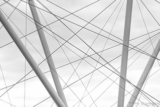Brisbane Sky Lines