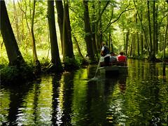 Boat trip in the Spree wood (Ostseetroll) Tags: brandenburg deu deutschland geo:lat=5187255832 geo:lon=1400795785 geotagged lehde lübbenauspreewald spreewood wasser water spiegelungen reflections kahnfahrt boattrip