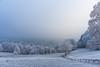Kreidacher Höhe (sfp - sebastian fischer photography) Tags: januar2017 landschaft odenwald winter waldmichelbach landscape nature frost schnee snow kreidacherhöhe path feldweg sonyfe55mmf18 pfad sony sonya7ii alpha emount deutschland germany allemagne