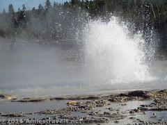 Sawmill Geyser and Pool (Annes Travels) Tags: yellowstone wyoming uppergeyserbasin geysers geothermal