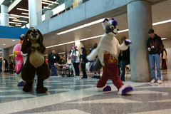 FCParade2017_03_-20170114-00065 (Kory / Leo Nardo) Tags: fur furry fursuit suiting dance party dj con convention further confusion fc san jose marriott center parade walk march fc2017 2017 pupleo kory
