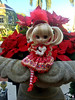 Poinsettias (Pullipprincess) Tags: pullip pullips cute kawaii christmas holiday groove grooveinc jpgroove junplanning pullipprupate prupate angelicpretty ap angelic pretty lolita outdoor doll dolls
