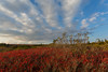 American Sunset (Ken Krach Photography) Tags: dollysods westvirginia