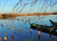 Grazie - 1 (antonella galardi) Tags: lombardia mantova 2017 inverno acqua grazie santuario fiume mincio loto barca