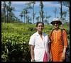 Paralai (Indianature st2i) Tags: valparai tamilnadu tea teaestate indianature india indiragandhiwildlifesanctuary westernghats anamalaitigerreserve anamalais anamallais anaimallais anamalaiwildlifesanctuary paralai 2016 2017